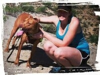 Pitbull on hiking trail, coming when called
